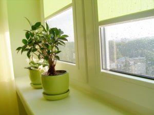 Was stellen die Accessoires für Fenster und Türrahmen dar?
